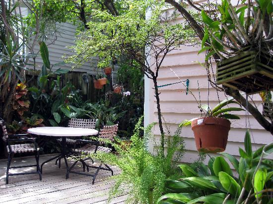 Key West Bed and Breakfast: Garden area - orchids