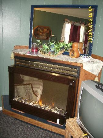 A Garden of Dreams: fireplace with no heat. It's just for looks