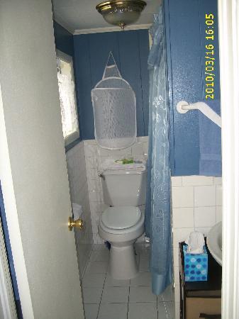 A Garden of Dreams: bathroom
