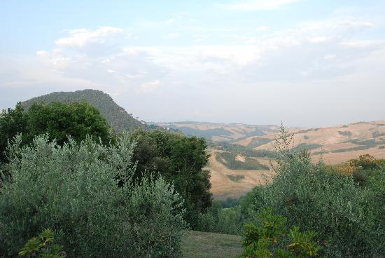 Agriturismo Podere San Lorenzo: view of the fields