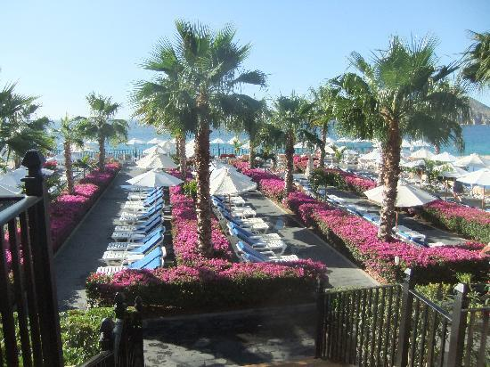Hotel Riu Santa Fe: Plenty of lounge chairs for sunning