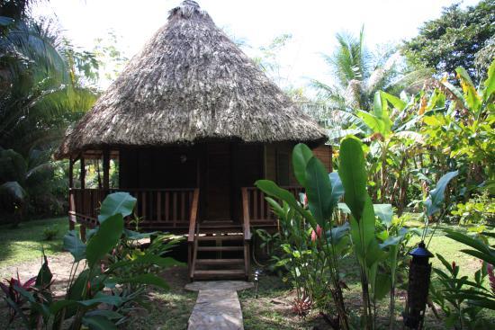 Cohune Palms River Cabanas: our room