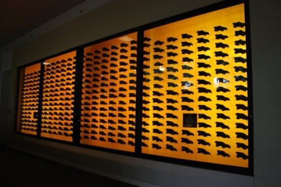 La Brea Tar Pits and Museum: all these are heads of wolves from 20,000 years ago
