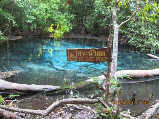 Hat Yai, Thailand: This is an rich-hued natural pool at the center of the forest, filled with glistening clear spri
