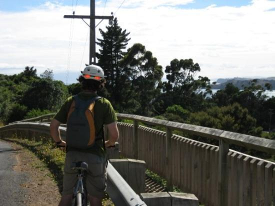 Waiheke-øya, New Zealand: Biking on Weiheke is not easy!