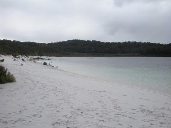 Bilde fra Fraser Island