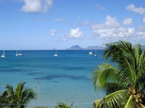 Fort-de-France, Martinique: A Sainte Anne.. super endroit pour admirer les coraux et les fonds peu profonds avec des étoiles