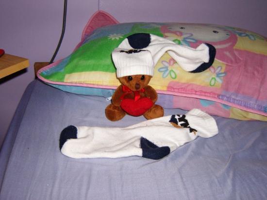 Hinchinbrook Island, Australia: Peanuts the Travelling Teddy!