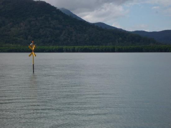 Hinchinbrook Island, Australia: Random sign thing-a-magig. I wonder what it is...