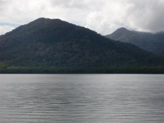 Hinchinbrook Island: Rainforest mountains.