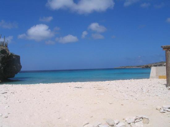 Kralendijk, Bonaire: Bonaire