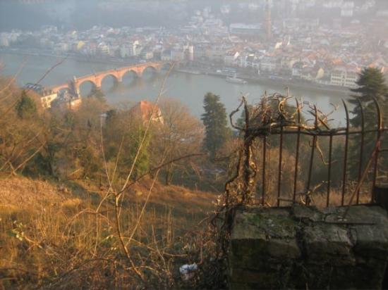 Carl Theodor Old Bridge (Alte Brucke): Looking down over the town and the old bridge.