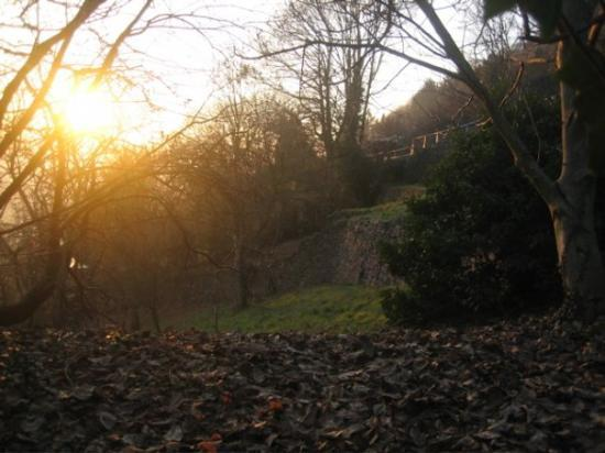 Philosophers' Way (Philosophenweg): Heidelberg, Baden-Wurttemberg, Germany