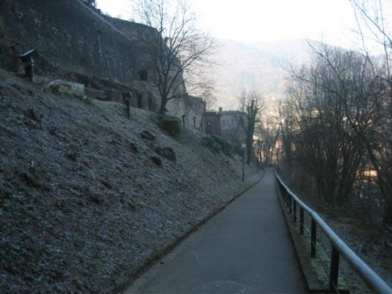 Heidelberg, Tyskland: Since I took steps up through the city to get to the castle, I decided get back down using the l