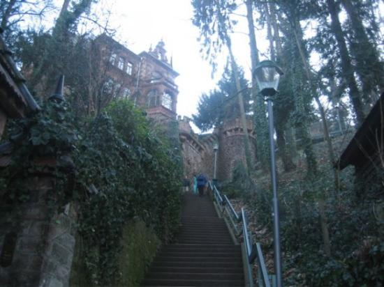 Heidelberg, Tyskland: Still more steps.