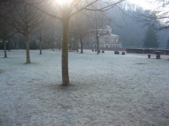 Heidelberg slott: The artillery garden all covered in frost.