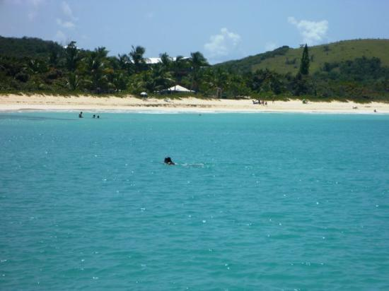 The crystal blue waters of Flamenco Bay on the island of Culebra.... This beach was rated the #3