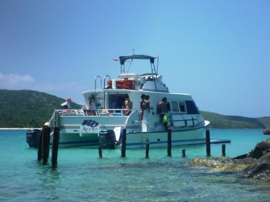 The East Island Excursions Catamaran that took us to Culebra.