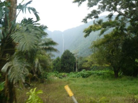 Bilde fra Wailea