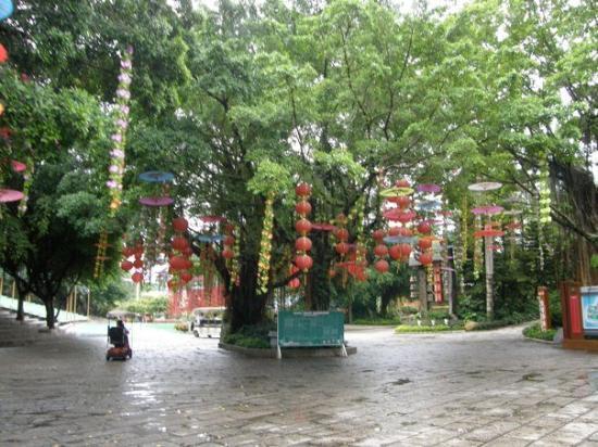 Shenzhen, Kina: P8043321