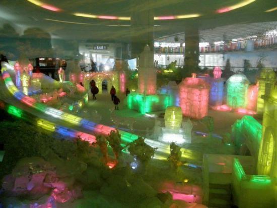 Shenzhen, Kina: P8043277