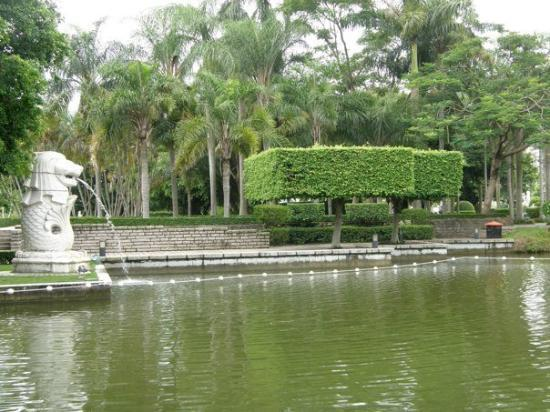 Shenzhen, Kina: P8043151