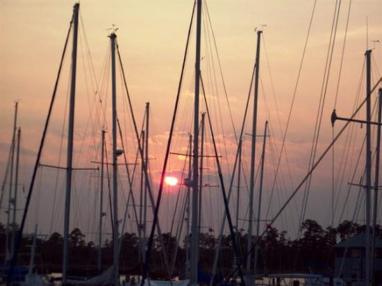 New Bern, NC: The harbor within walking distance from our place