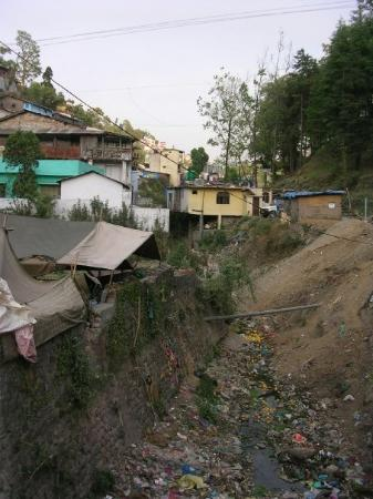 Almora, India: rubbish
