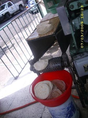 Ciudad Nezahualcoyotl, Mexico: fresh tortillas