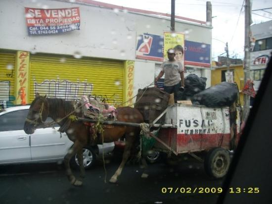Ciudad Nezahualcoyotl, Mexico: Do you need your trash picked up by the URBYNA garbage service?