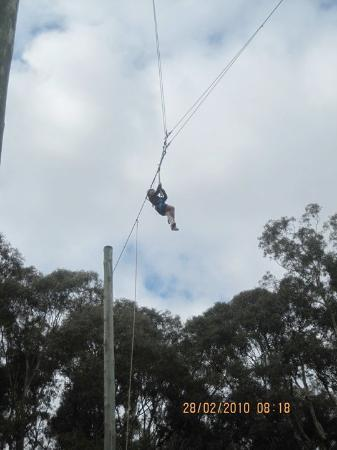 Brisbane, Australia: oh mah gawd! i was actually up higher than the trees!