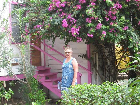 Ranguana Lodge: Garden Cabana