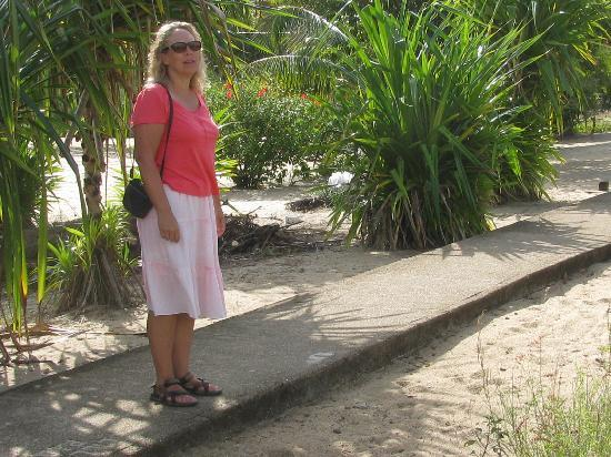 "Ranguana Lodge: The ""Side Walk"" to town"