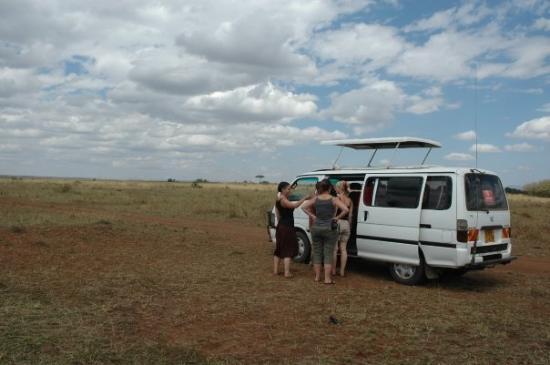 Masai Mara naturreservat, Kenya: bob's van
