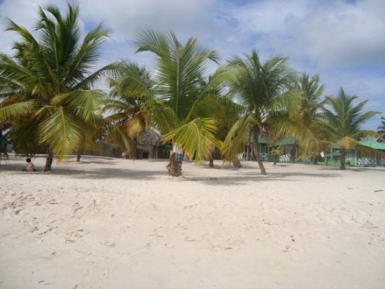 Playa Mano Juan, Isla Saona