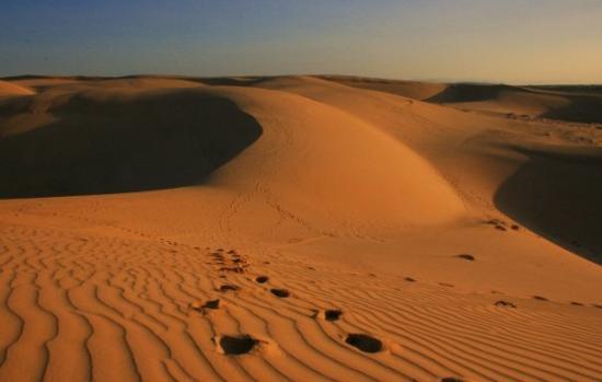 Mui Ne, Vietnam: Sand Dunes...