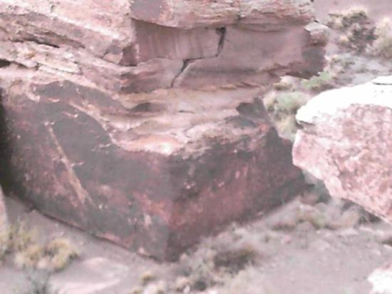 Petrified Forest National Park, AZ: Indian writings on the rocks... can you see them?