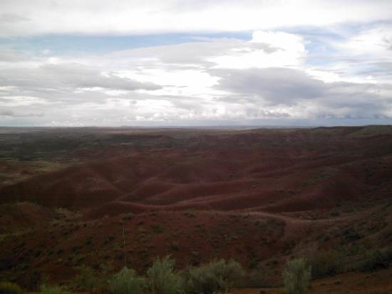 Petrified Forest National Park, AZ: The Painted Desert