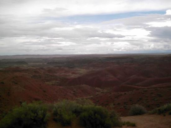 Bilde fra Petrified Forest National Park