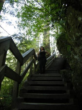 Deep Cove, Canada: eso si, son burda de escaleras...