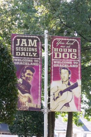 Bilde fra Graceland