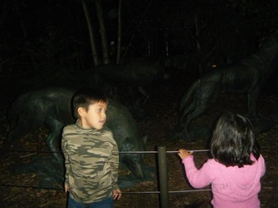 Lincoln Park Zoo: Mike n jas
