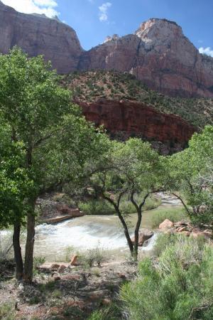 Bilde fra Zion National Park