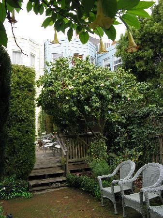 Union Street Inn: Lovely garden (even in winter)