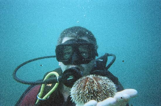Tio Sports: My hubby on his first dive