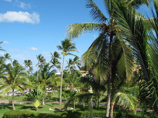 Punta Cana Princess All Suites Resort & Spa: Grounds