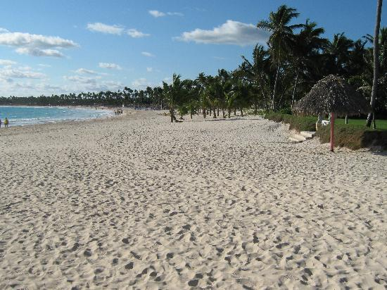 Punta Cana Princess All Suites Resort & Spa: Beach