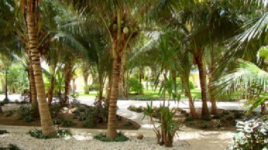 Sensimar Resort Riviera Maya: grounds of seaside