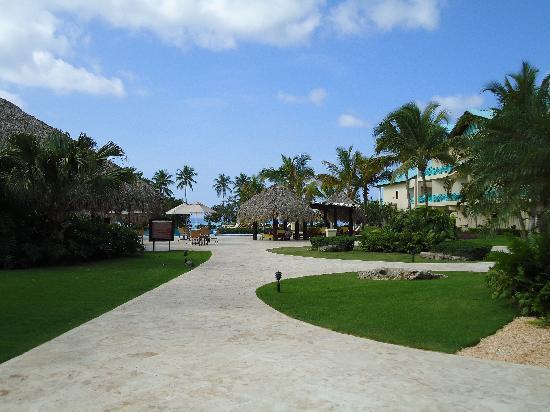 Dreams La Romana Resort & Spa: piscina club