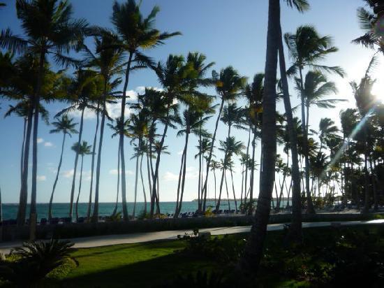 Punta Cana, Den dominikanske republikk: belleza